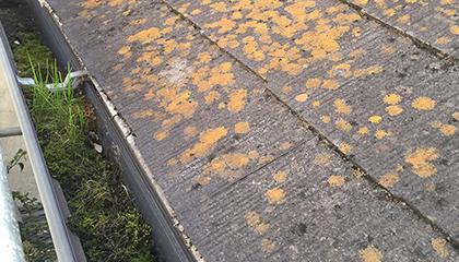 屋根塗装工事 施工前1